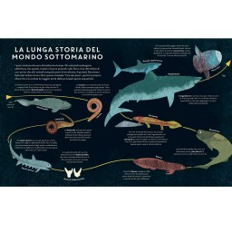 Pesci del mondo