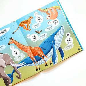 I nostri atlanti domanda-risposta sono diventati sei! Spazio, Terra, Invenzioni, Dinosauri, Vulcani e… Animali 🐴🐺🐝🦉 Adatto per tutti i bambini curiosi 📚✨ . . . #sassijunior #sassieditore #kids #childrenbooks #books #bookstagram #reading #publisher #publishinghouse #booklover #book #libri #libriperbambini #libriperragazzi #libriillustratiperbambini #librieducativi #libriinterattivi #animali  #atlanti